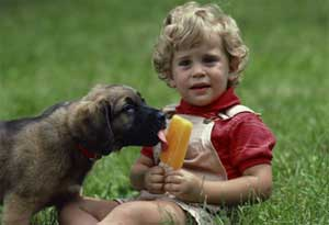 Child with dog eating popsicle
